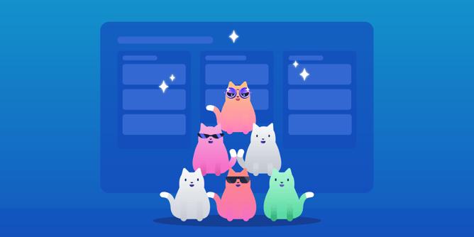在金字塔图表的猫队
